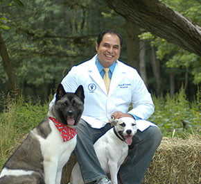 Dr. Lawendy with his two dogs